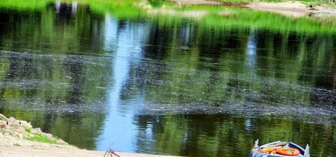 Około południa nadal przy brzegu osiadają pozostałości po tym, co płynęło kilka godzin wcześniej całą szerokością rzeki. Fot: Maja Nowak/NOWOSOLSKIE.info