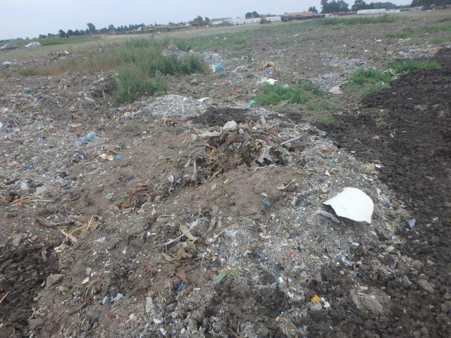 Fot. 1 Powierzchnia działki zanieczyszczona odpadami
